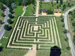 labirinto 6